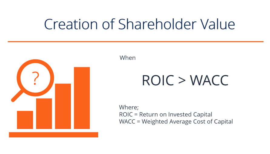 Significance of Negative Return on Shareholders' Equity